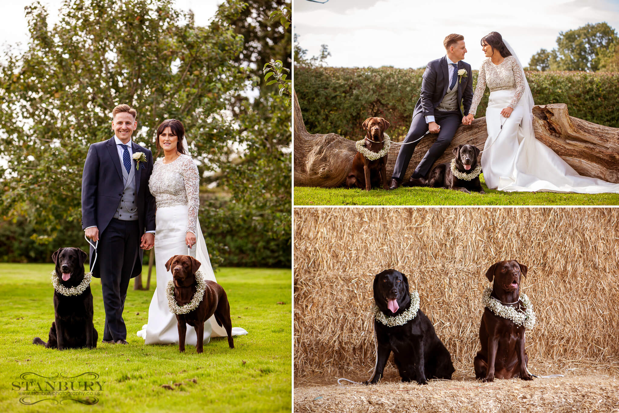 owen-house-wedding-barn-bride-groom-dogs-photography-stanbury
